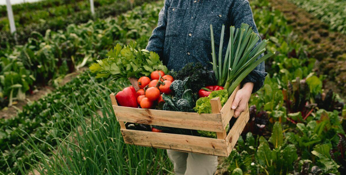 avantage agriculture bilogique